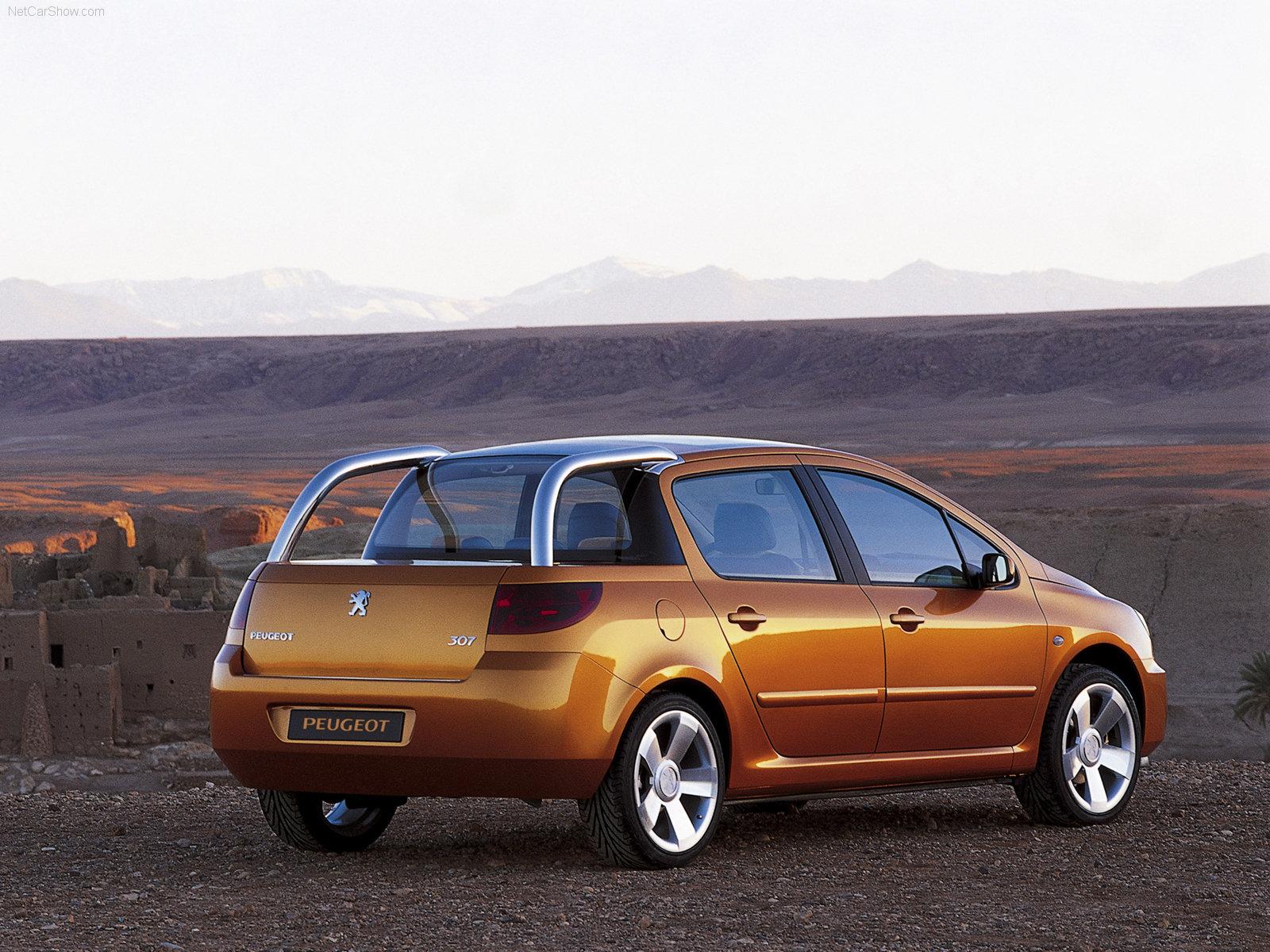 Peugeot-Cameleo - Christian Van Oost
